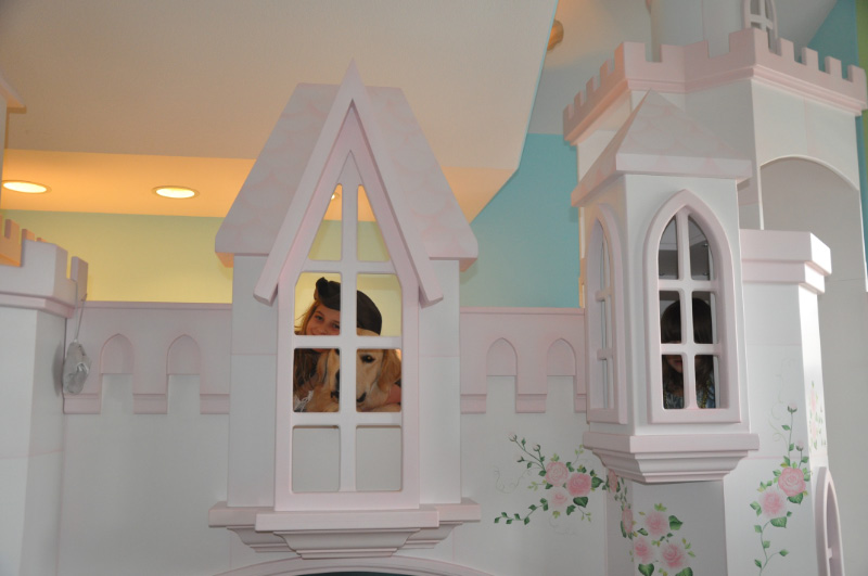 Braun Castle Bunk Bed, Pink Trim, Hand Painted, Princess Castle Bed, Princess Castle Bunk Bed, Princess Bed, Princess Bedroom