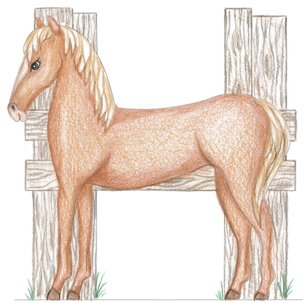 Pony or Horse Bunk Bed and Playhouse